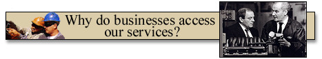 Why do businesses access our services?